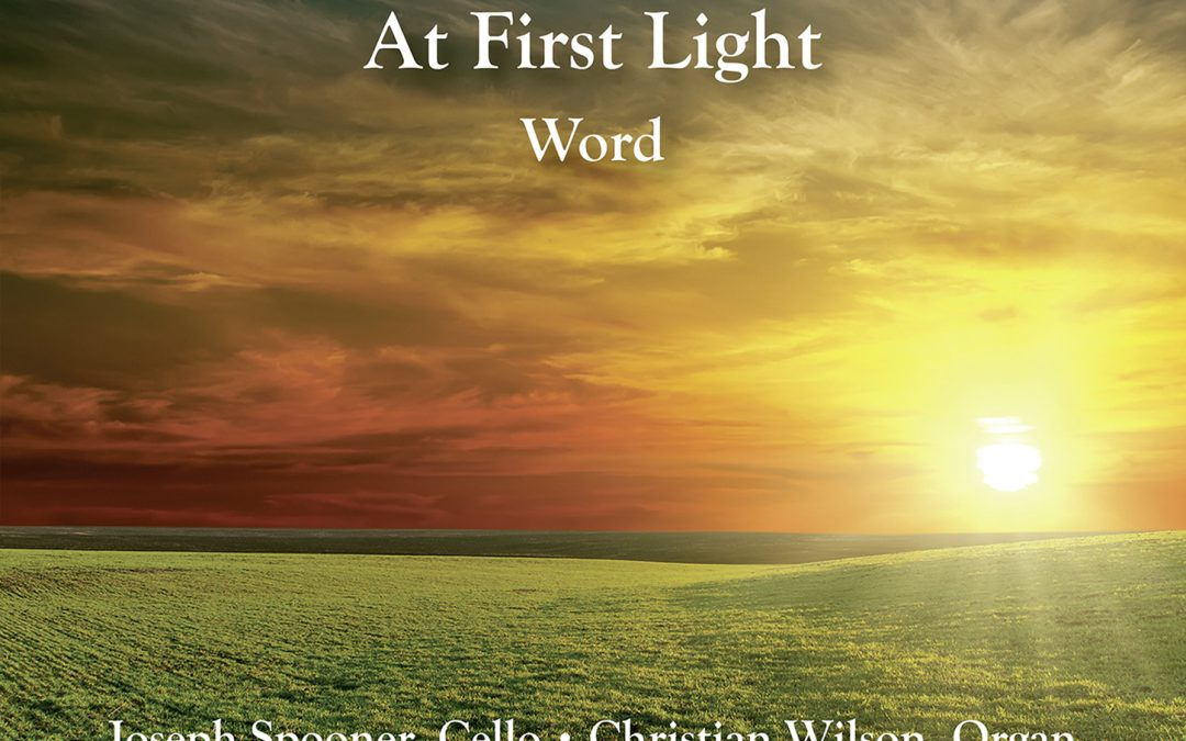 Francis Pott: At First Light | Word – Commotio/Matthew Berry [Naxos]