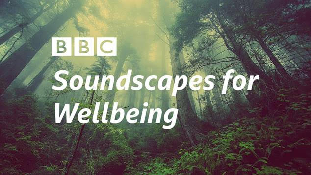 BBC announces Soundscapes for Wellbeing – aiming to bring nature to everyone.